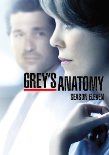 Anatomia de Grey Temporada 11 audio Español