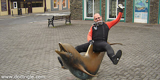 irish tourism dolphin dingle fungi statue
