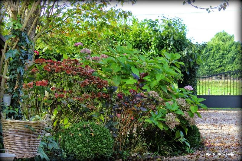 Le jardin d 39 oscar jardin d 39 octobre for Jardin octobre