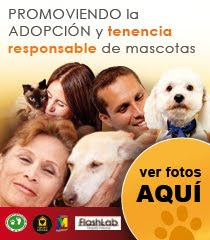 CONCIENCIA ANIMAL