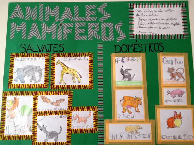 Proyecto de Animales Mamíferos con Washi Tape