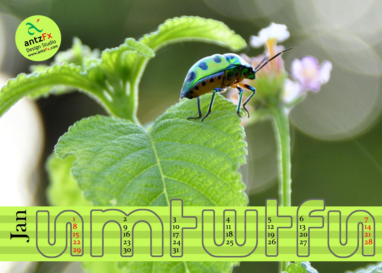 http://1.bp.blogspot.com/-d_-jy75C3qs/TwEGfCW5SeI/AAAAAAAAEt0/JTH8SPw4jMg/s1600/01jan2012_1440x1030.jpg