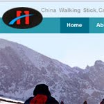 chinawalkingstick