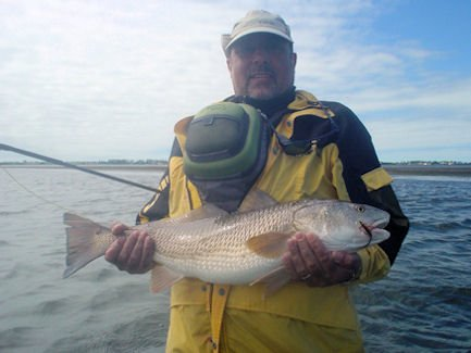 Florida fishing guides fishing reports saltwater boat for Siesta key fishing report