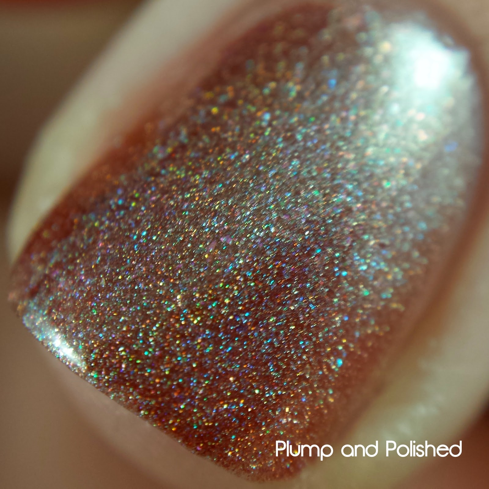 Philly Loves Lacquer - Christmas at the Pound