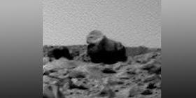 4 Sosok Hewan Penghuni Planet Mars, Bukti Nyata Ada Kehidupan