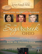 Love Finds You in Sugarcreek, Ohio (2014)