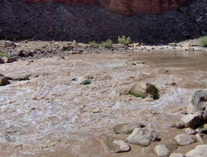 Cataract Canyon - 2006