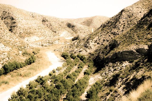Provincia de Aragon