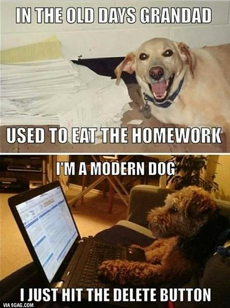 grandad dog modern dog homework