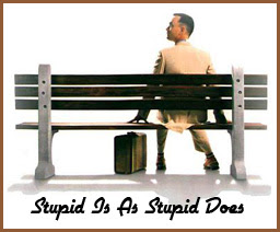 stupid is what stupid does