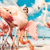 ''Vogue''-ը շարունակում է զարմացնել մեզ գեղեցիկ ֆոտոշարքերով
