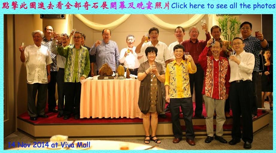 2014 Viva 奇石展开幕及晚宴