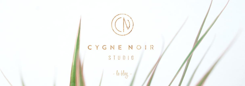 http://cygnenoirstudio-photographe.blogspot.fr/