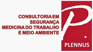 Plennus Consultoria
