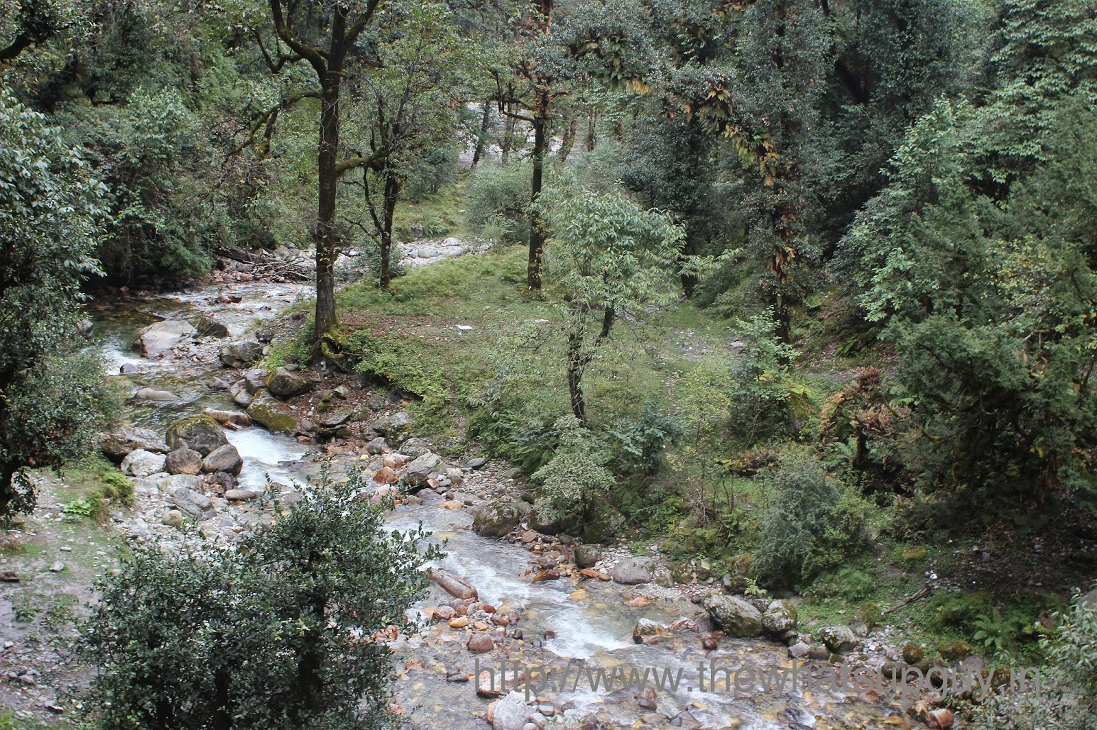 Stream Roopkund Trek With India Hikes Day 6