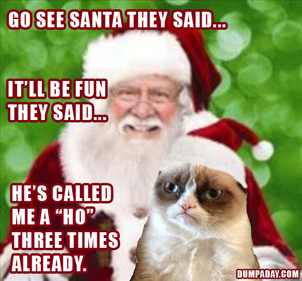 grumpy cat christmas meme santa wallpaper desktop hd 620 x 576