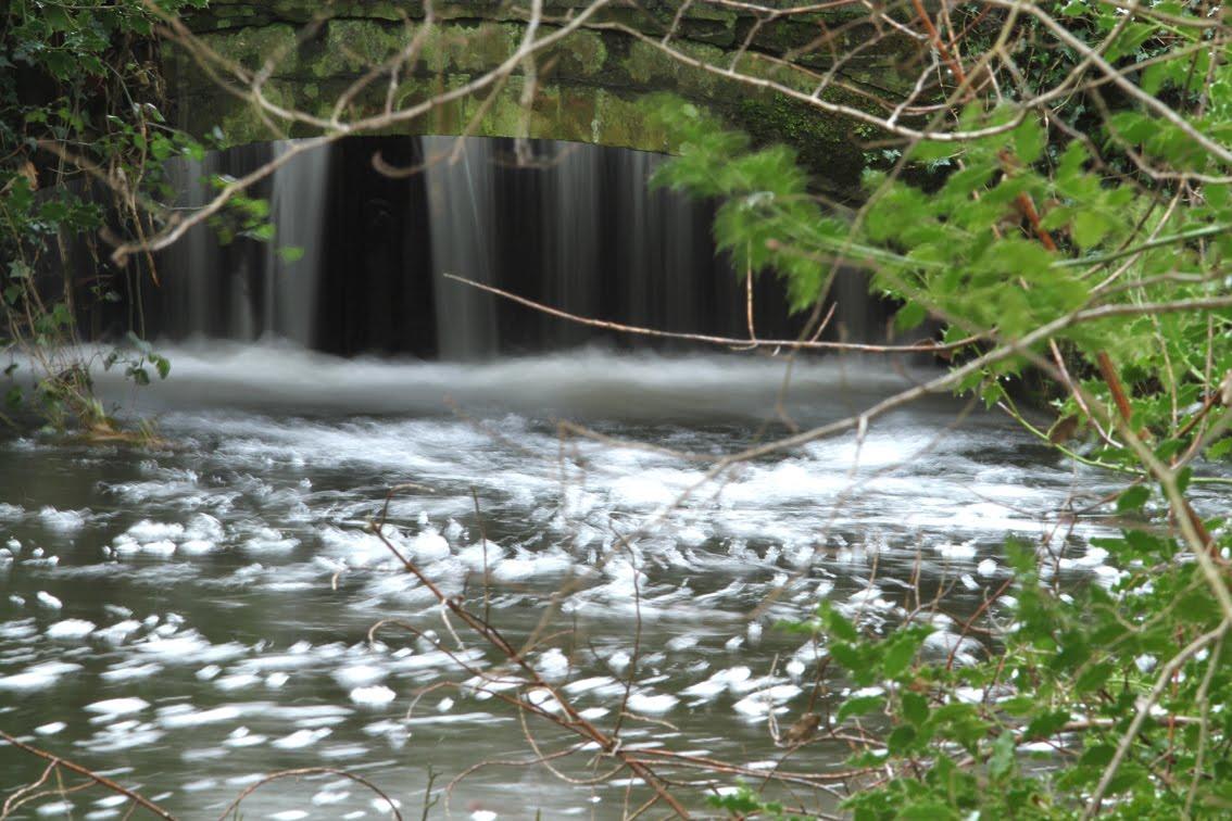 Glandford natural surroundings