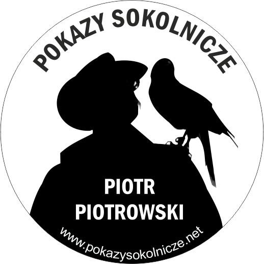 Pokazy Sokolnicze