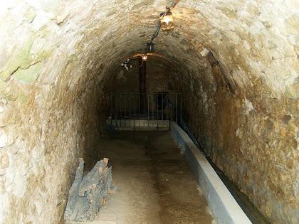 Mina d'entrada al carcavà del Molí de Dalt
