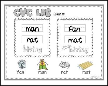 math worksheet : the best of teacher entrepreneurs ii free misc lesson  u201cfree  : Living And Nonliving Worksheets Kindergarten