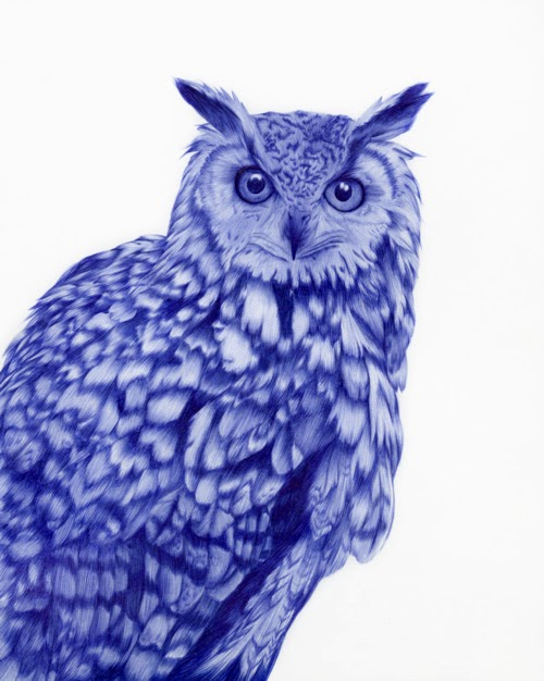 11-Owl-Sarah-Esteje-ABADIDABOU-Hyper-realistic-Ballpoint-Pen-Animals-www-designstack-co