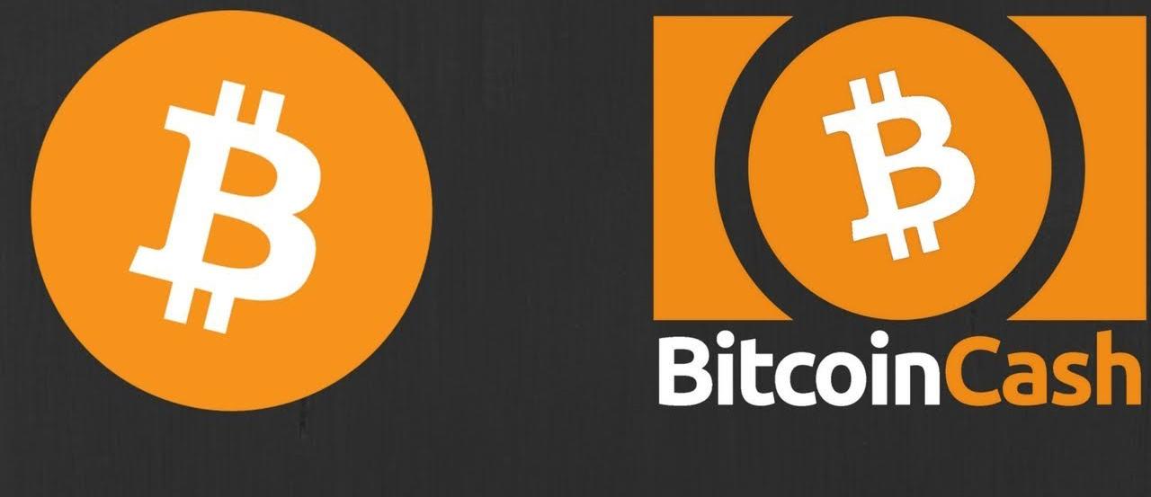 Si quieres apoyarnos con un donativo en BTC o Bitcoin Cash, hazlo a: