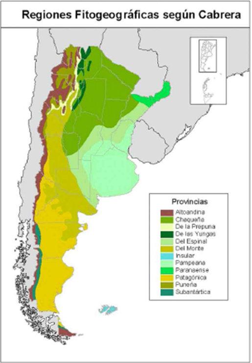 Noa forestal informaci n t cnica for Plano de un vivero forestal