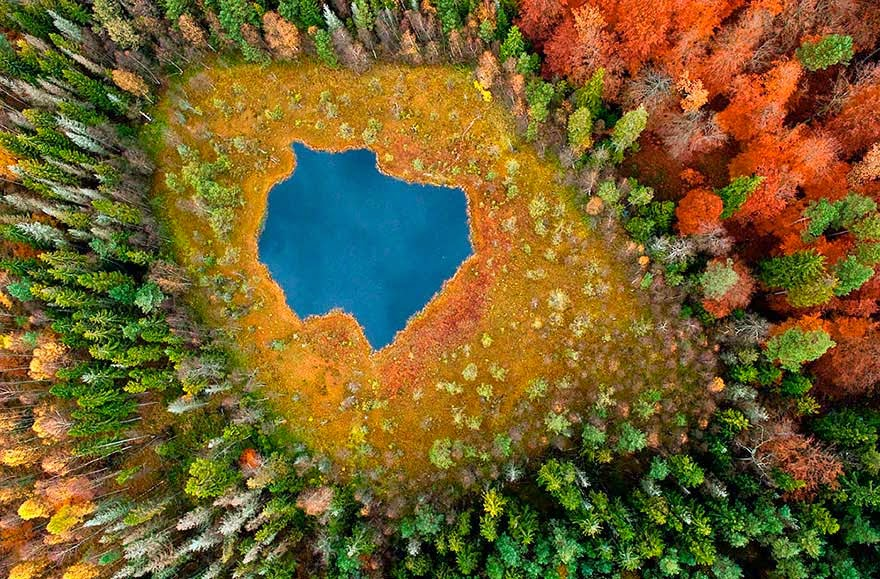 Lago Forest, Polonia