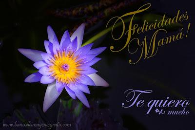 Felicidades Mamá - Te quiero mucho - Día de las Madres - Mensajes