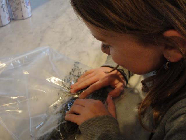 kids rolling herbs