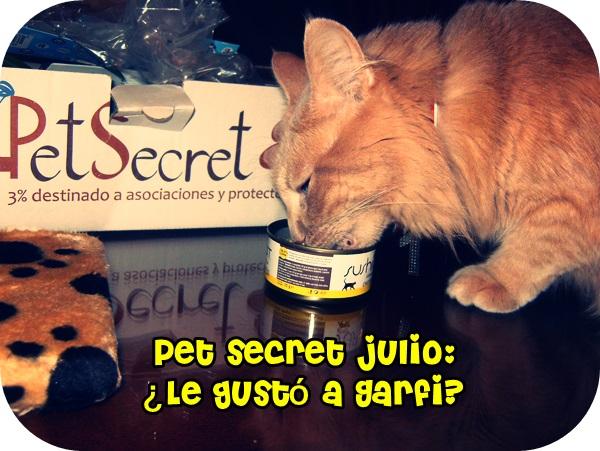 Diario de una beautyadicta 288 pet secret julio gatos mi experiencia o la de garfi mejor dicho - Como saber si tengo pulgas en casa ...