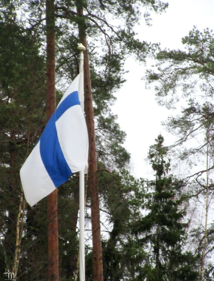 siniristilippu, Suomen lippu