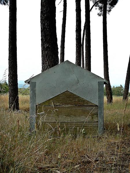 fotografia de casota de cão, casa no campo, dog house photo