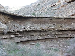 Bisonte en piedra pintura rupestre María de Huerva