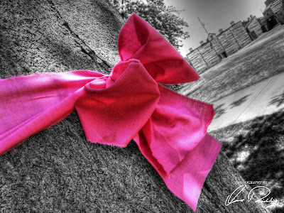 national breast cancer awareness month nbcam pink ribbon fort wayne in indiana tree
