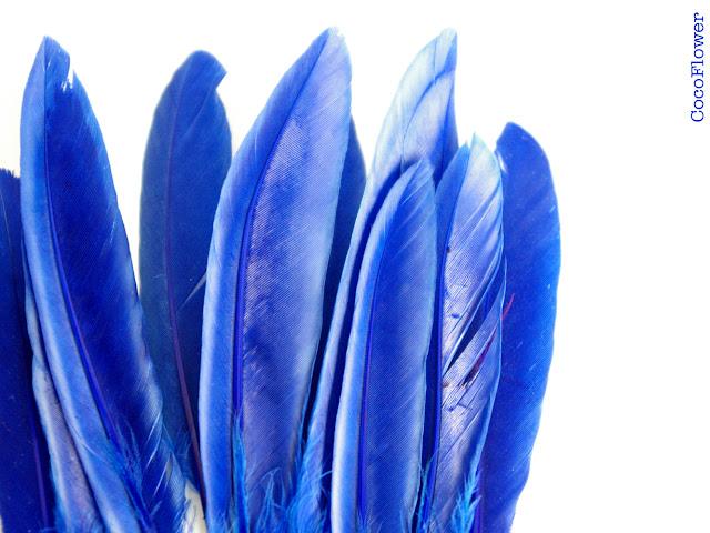 Plume bleu roi - cocoflower - http://cocoflower.alittlemercerie.com
