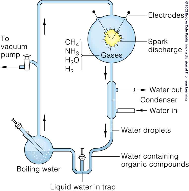 urey and miller experiment Conducting miller-urey experiments citation: purpose of this manuscript is to provide the reader with a general experimental protocol that can be used to conduct a miller-urey type spark discharge experiment, using a simplified 3 l reaction flask.