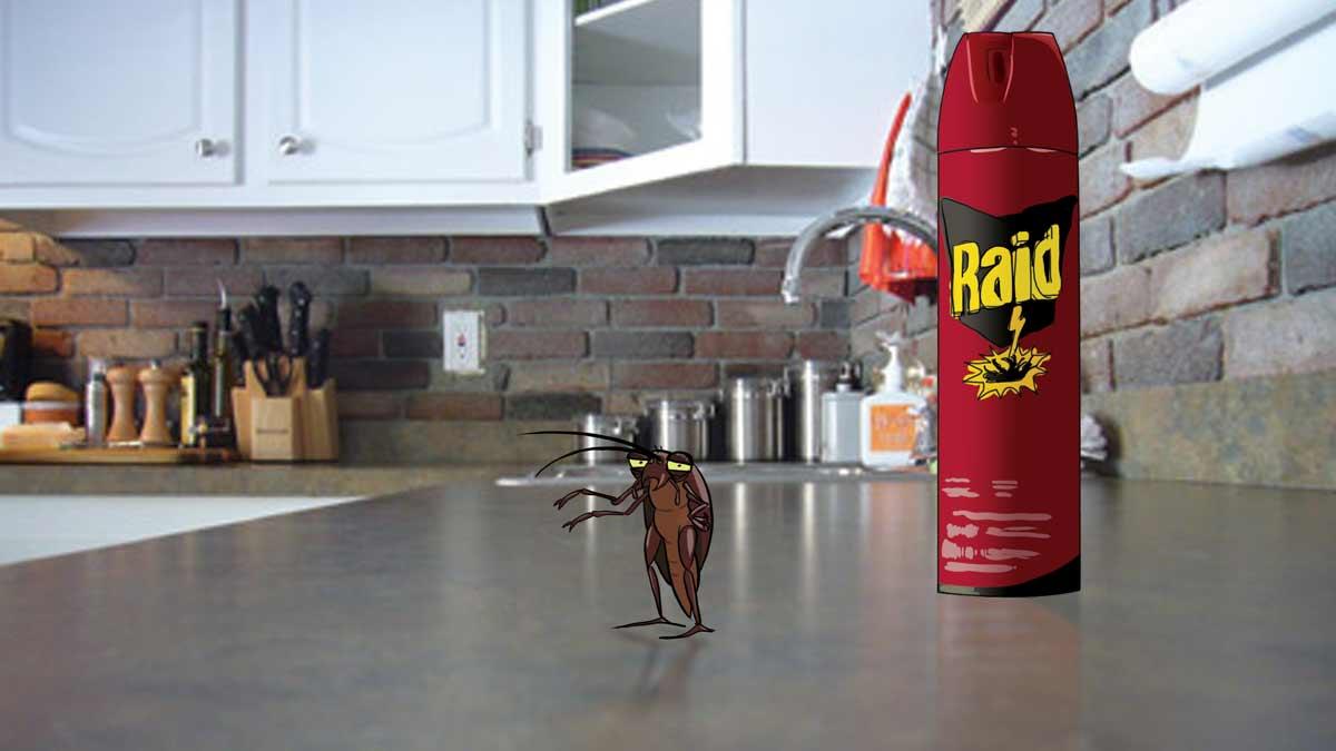 Raid Bug Spray Commercial