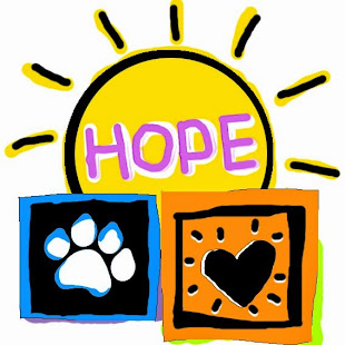 Adopt A Dog Today!