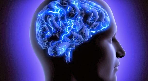 9 fatos incríveis sobre o cérebro humano