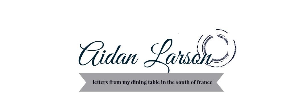 AIDAN LARSON