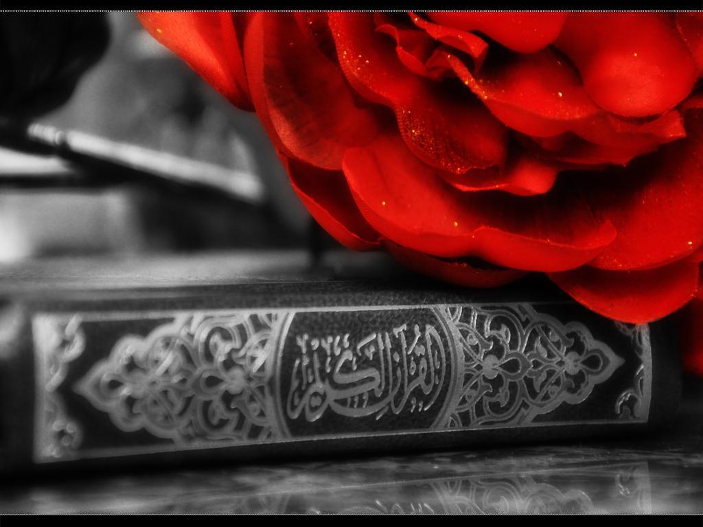 http://1.bp.blogspot.com/-dejUvieX9dE/T7-DXACJVWI/AAAAAAAAAfM/uyz419YvCgk/s1600/islamic-wallpaper-hd-7.jpg
