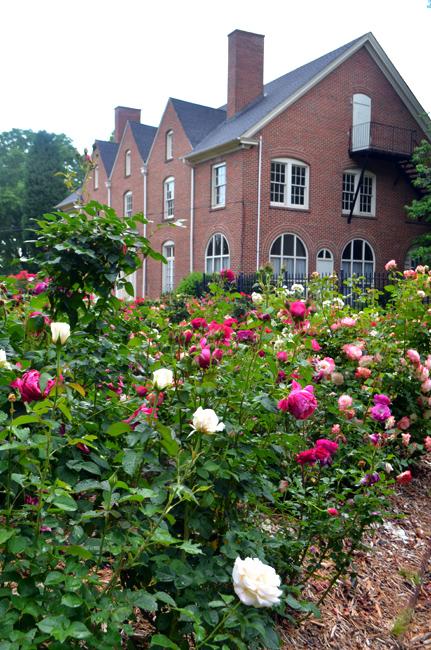 Wanderlust Atlanta Robert L Staton Memorial Rose Garden