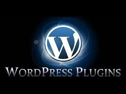 wordpress plugins,online business opportunity,work for home,how to make money online,wordpress blog plugins