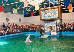 Sosmuseosvenezuela usuarios molestos por condiciones del Entradas aquarium valencia