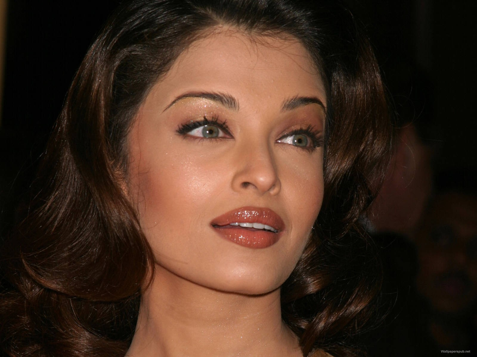 Aishwarya Rai Bachchan: Beauty through the ages