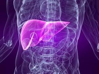 Penyakit Liver dan Penyebabnya