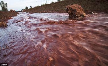efectos del cianuro en el agua