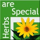 Herbs are Special